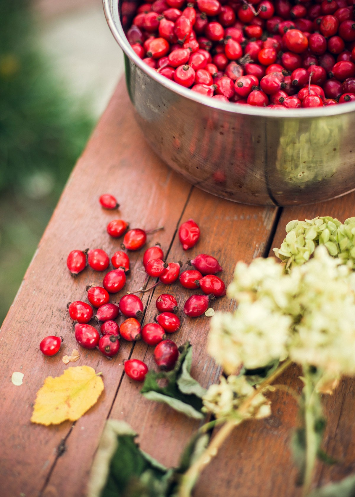 Rosehips are one of the ways you can use vitamin c benefit for the skin