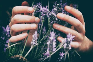 Lavender is a time-tested and beloved essential oil for stress.